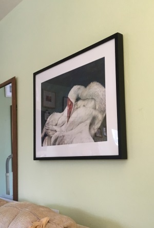 Framed painting of Siberian Crane