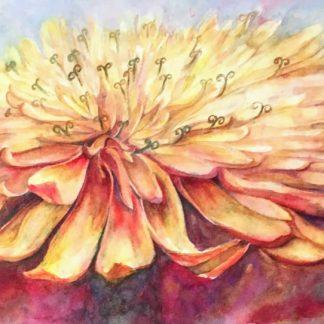 Watercolor Original Paintings