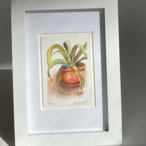 An original watercolor painting of an aloe in a terra cotta pot.