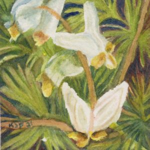 An original watercolor of the wildflower Dutchman's Breeches mounted on a cradled board and sealed with wax.