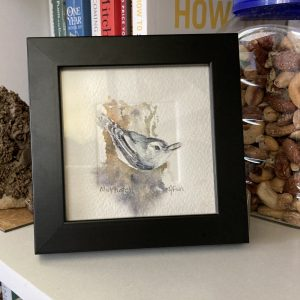 Nuthatch original watercolor in a black frame